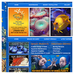 Chicago Web Design Chicago Fish and Coral